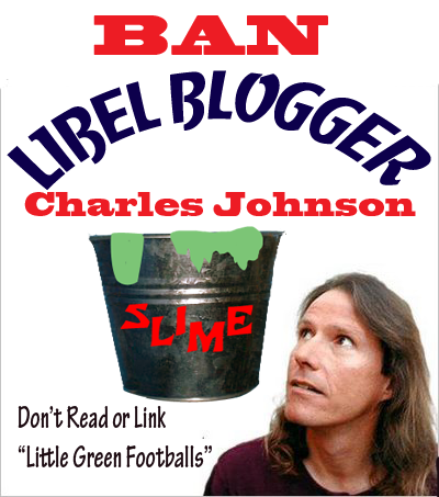 LibelBlogger3